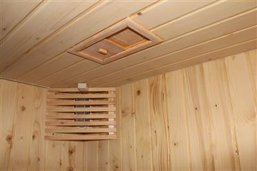 Steam Shower Enclosure with Traditional Sauna 	B001  - Image 8